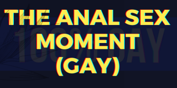 The Anal Sex Moment (Gay)
